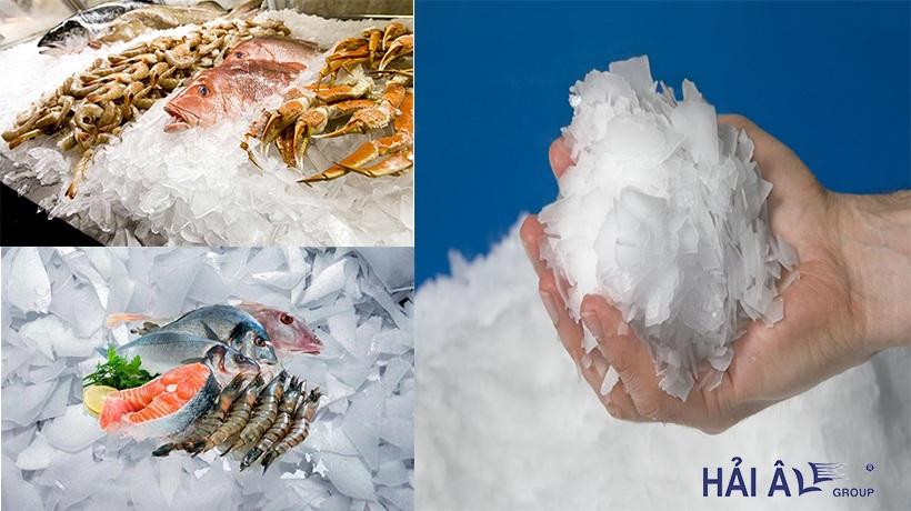 Đá vảy bảo quản hải sản